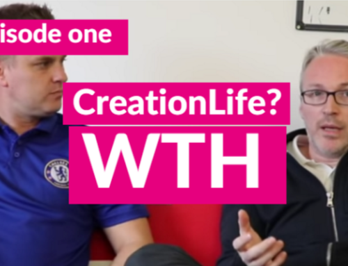 Why Creation Agency Is Going All In On YouTube… #CreationLife WTH?